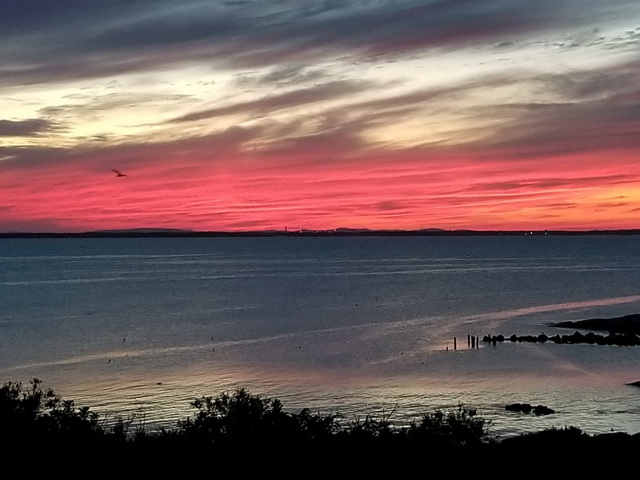 Sunset across Babb's Cove. Photo: Renee Pagoota-Wight.