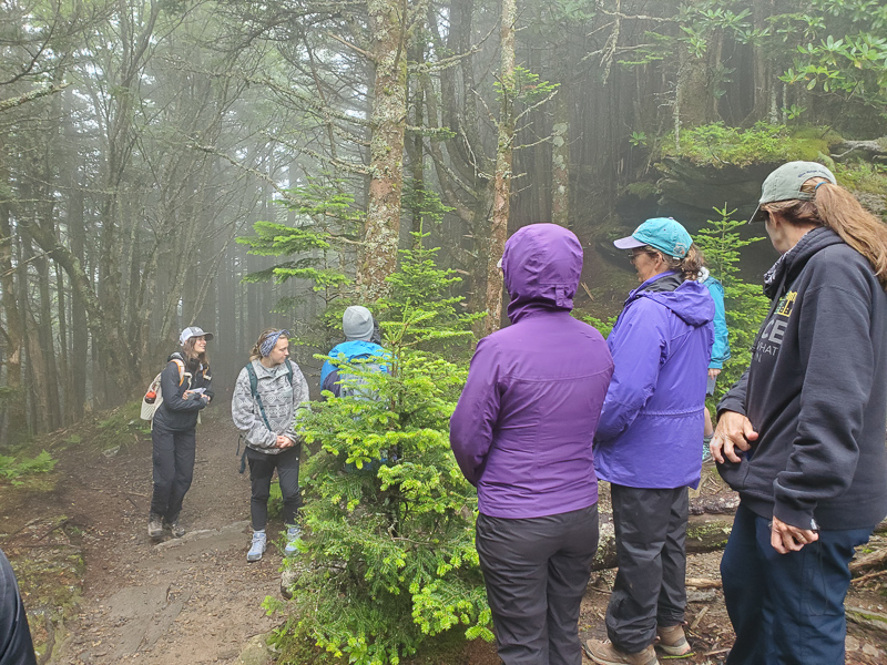 Eryn teaches us about her expert topic, the Fraser Fir Tree, and their importance to the unique, high elevation spruce-fir forests found at Mount Mitchell.