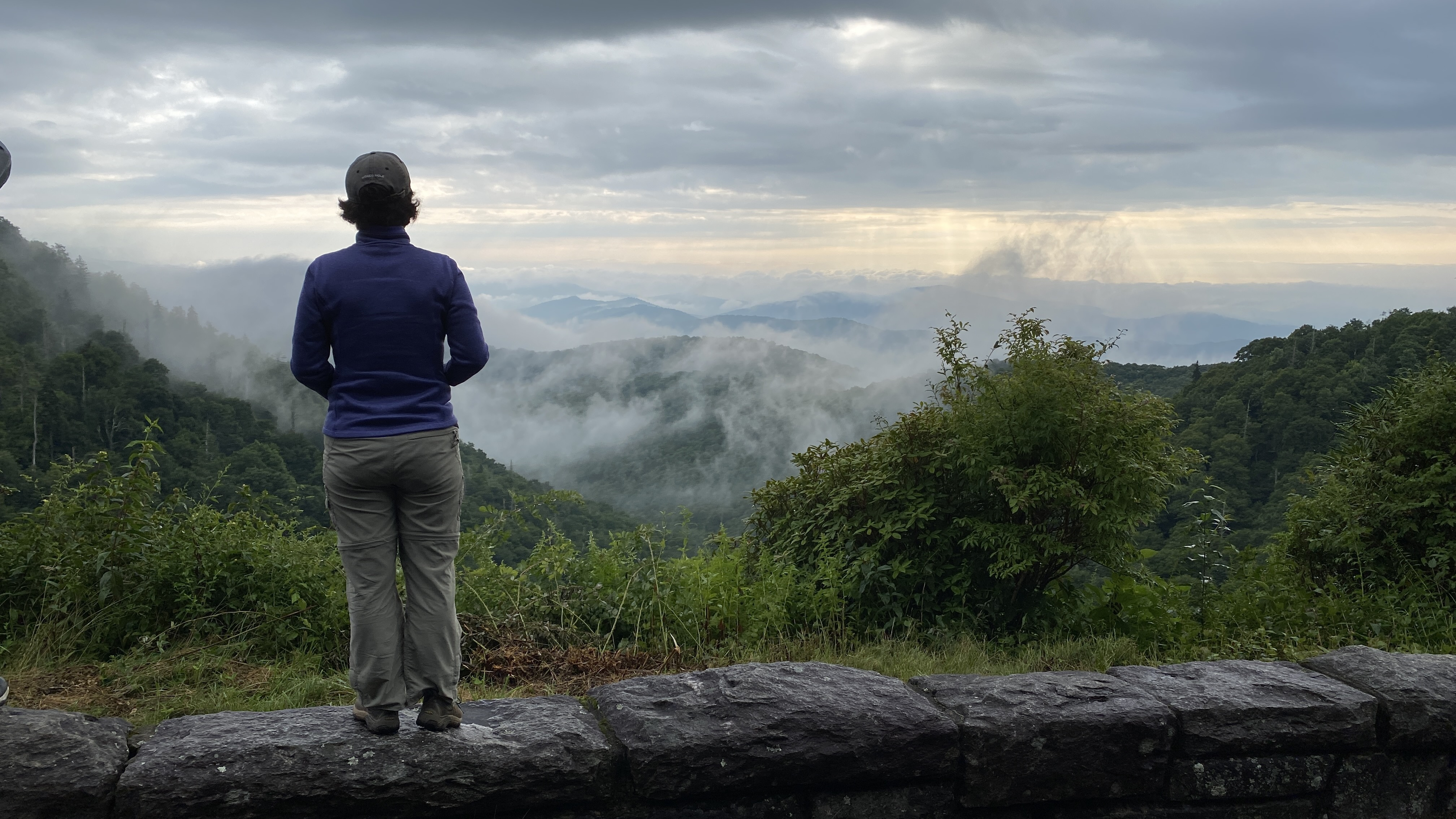 Silhouetted person overlooking mountains and mist